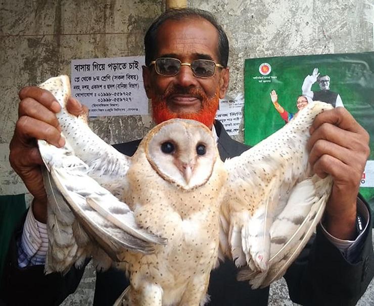 গোপালগঞ্জে 'বিরল' প্রজাতির পেঁচা