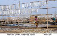 আবহাওয়ার অজুহাত দেখিয়ে রাজস্ব কমানোর চেষ্টা: বন বিভাগের অনিয়মের বেড়াজালে দুবলার শুটকি পল্লী