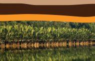 অমর একুশে গ্রন্থমেলায় সাংবাদিক গৌরাঙ্গ নন্দীর পরিবেশ বিষয়ক গ্রন্থ 'সুন্দরবন উপকূলের কথকতা'