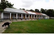 শৈলকুপা আউশিয়া আইডিয়াল মাধ্যমিক বিদ্যালয়ে চলছে অনিয়ম দুর্ণীতির মহোউৎসব