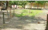 থানায় অভিযোগ দায়ের: স্কুল মাঠে বাঁশের বেড়া