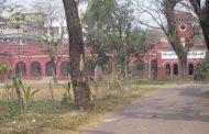 দুদক'র মামলায় নারী কাস্টমস কর্মচারীর ১৩ বছরের কারাদন্ড