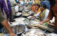 তিন মাসে মাছ রফতানি ৭৬২ কোটি টাকা, চীনের বাজার হাতছাড়া