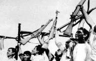 সরকারি সহায়তায় আর্থসামাজিক সুরক্ষা পাচ্ছেন বীরমুক্তিযোদ্ধারা
