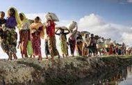 রোহিঙ্গা জনগোষ্ঠী ইস্যুতে সরকারের মানবিকতা