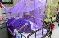 ২২১ জন নতুন ডেঙ্গু রোগী হাসপাতালে ভর্তি, এ পর্যন্ত ৩১ জনের মৃত্যু