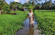 সাতক্ষীরা পৌরসভা: দেড় মাস ধরে সহস্র পরিবারের পানির মধ্যে বসবাস